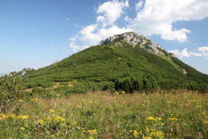 2014-08-02-sivy-vrch-salatin1