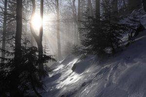 2020-01-25-sutovska-dolina-300x200