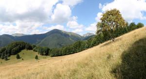 IMG_6406-6416-panorama